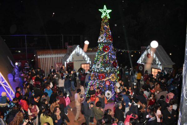 Inicio - Noticias - Boletine encendido del árbol de navidad